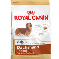 MINI DACHSHUND ADULT (500G - 1.5KG - 7.5KG)