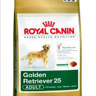 GOLDEN RETRIEVER ADULT (3KG - 12KG)