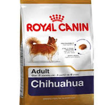 CHIHUAHUA ADULT (500G - 1.5KG - 3KG)