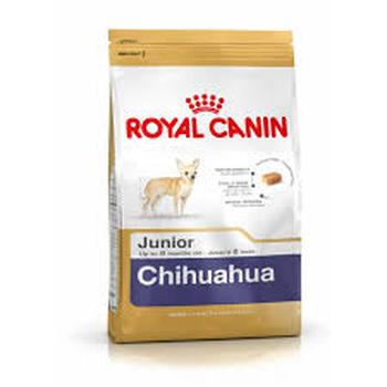 CHIHUAHUA JUNIOR (1.5KG)