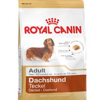 MINI DACHSHUND ADULT (500G - 1.5KG - 7.5KG)