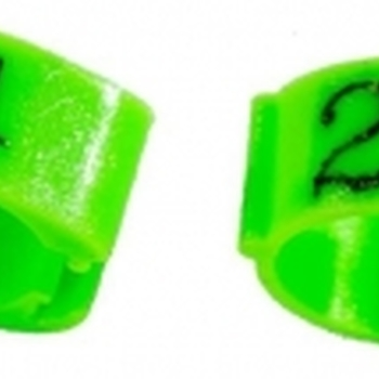 BAGUE CLIPS NUMEROTES