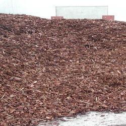 Ecorces de pin décoratives 70l