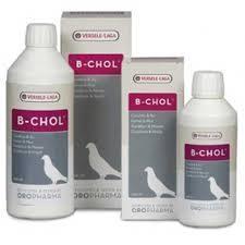 B-CHOL 250ML