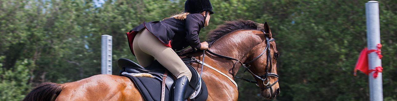 Etablissements Van Thuyne - Paardrijden